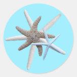 Estrellas de mar en el pegatina tropical redondo