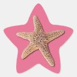 Estrellas de mar en la madreselva 2011 del pantone pegatina en forma de estrella