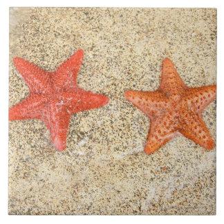 estrellas de mar en la playa, en el borde del océa azulejos