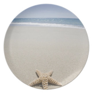 Estrellas de mar en la playa por Océano Atlántico Plato Para Fiesta