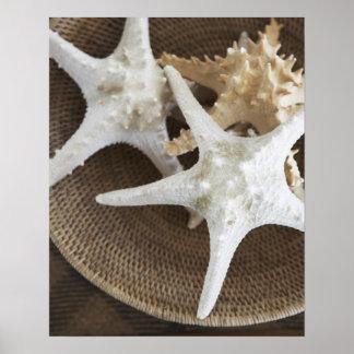 Estrellas de mar en una cesta poster