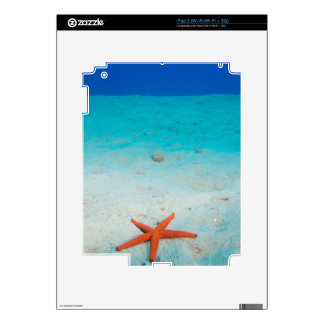 Estrellas de mar en una duna de arena subacuática calcomanías para iPad 2