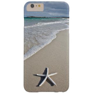 Estrellas de mar en una playa alejada funda de iPhone 6 plus barely there
