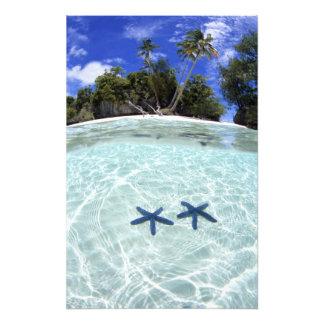 Estrellas de mar, islas del rock, Palau 2 Fotografía