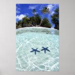 Estrellas de mar, islas del rock, Palau 2 Impresiones