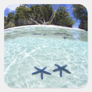 Estrellas de mar, islas del rock, Palau 2 Calcomania Cuadradas Personalizada