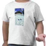 Estrellas de mar, islas del rock, Palau 2 Camisetas