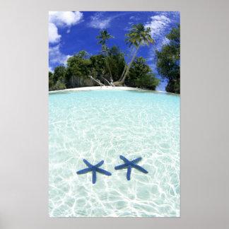 Estrellas de mar, islas del rock, Palau Poster