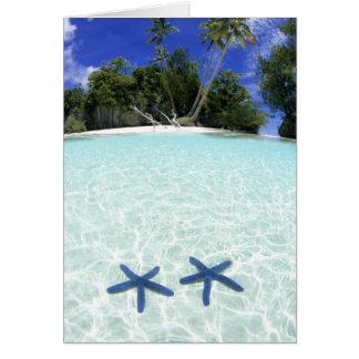 Estrellas de mar islas del rock Palau Tarjetón