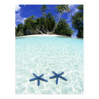Estrellas de mar islas del rock Palau Tarjetas Postales
