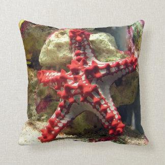 Estrellas de mar nudosas rojas - tiro increíble cojín