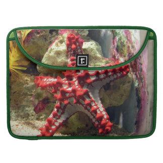 Estrellas de mar nudosas rojas - tiro increíble fundas macbook pro
