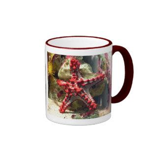 Estrellas de mar nudosas rojas - tiro increíble taza a dos colores