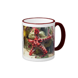 Estrellas de mar nudosas rojas - tiro increíble taza de dos colores
