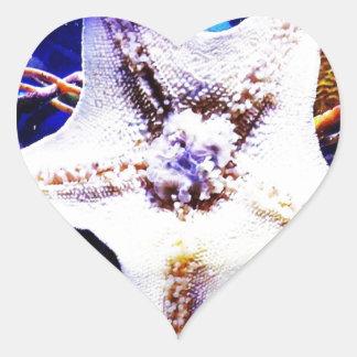 Estrellas de mar pegatina en forma de corazón