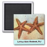 estrellas de mar, poco puerto del huevo, imán de N