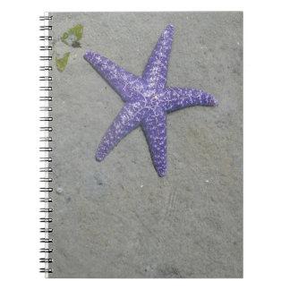 Estrellas de mar púrpuras pacíficas note book