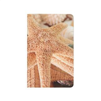 Estrellas de mar secadas vendidas como recuerdos 2 cuadernos