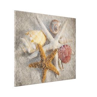 Estrellas de mar/Shell/de la arena todavía de la p Impresión En Tela
