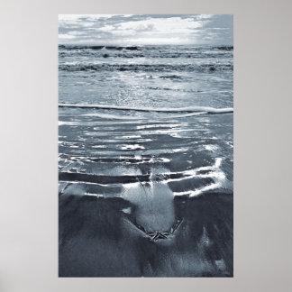 Estrellas de mar solitarias en el poster de la pla