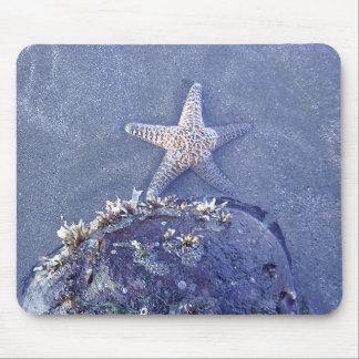 Estrellas de mar tapete de ratones