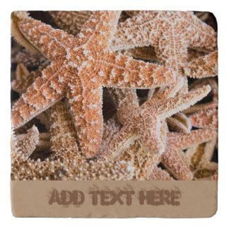 Estrellas de mar Trivets de piedra de encargo del Salvamanteles