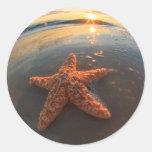 Estrellas de mar y burbujas en la puesta del sol etiquetas