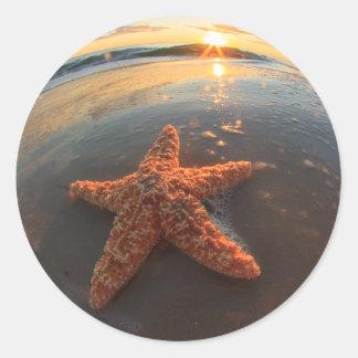 Estrellas de mar y burbujas en la puesta del sol etiquetas redondas