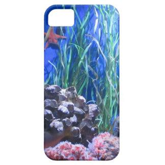 Estrellas de mar y caso del coral iPhone5 iPhone 5 Cobertura