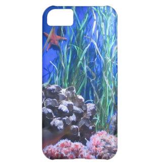 Estrellas de mar y caso del coral iPhone5