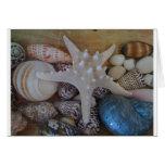 Estrellas de mar y foto de las cáscaras felicitaciones