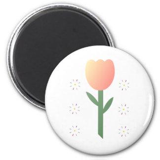 Estrellas del tulipán del melocotón imán para frigorífico