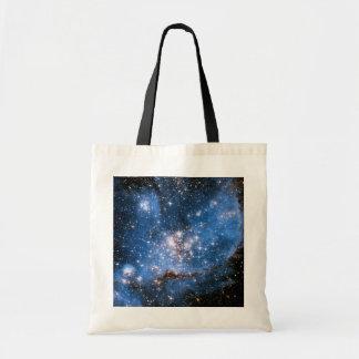 Estrellas infantiles de NGC 346 Bolsa
