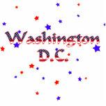 Estrellas patrióticas del Washington DC Esculturas Fotograficas
