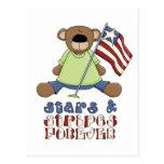 Estrellas y rayas para siempre tarjetas postales