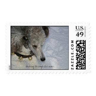 Estrellazo a través del franqueo de la nieve… timbre postal