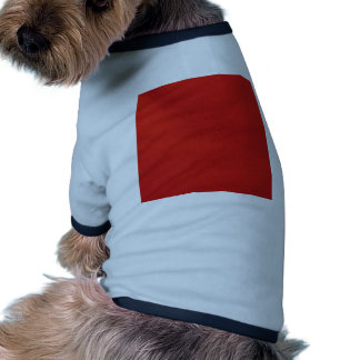 estructura de cuero, roja camisa de mascota