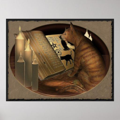 Estudiar la impresión de las lecciones del gato impresiones