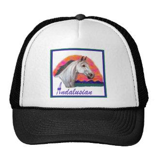 Estudio andaluz de la cabeza de caballo gorro de camionero