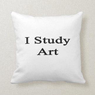 Estudio arte cojin