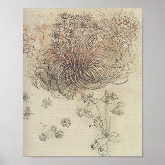 Estudio botánico de Leonardo Póster