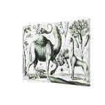 Estudio de animales y de flores, grabado impresión en lona