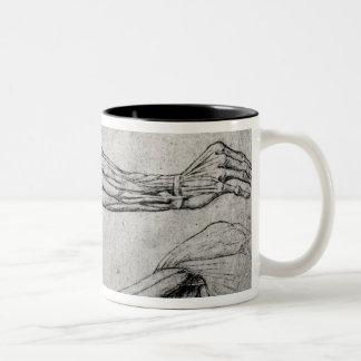 Estudio de brazos taza de café de dos colores