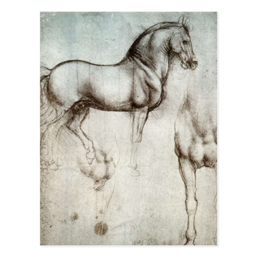 Estudio de caballos postal