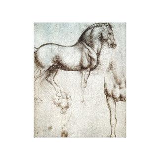 Estudio de da Vinci de un bosquejo del dibujo de l Impresiones En Lienzo Estiradas