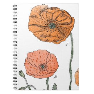 Estudio de la amapola por VOL25 Cuadernos