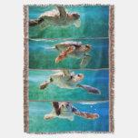 Estudio de la tortuga de mar del necio manta