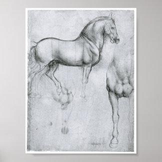 Estudio de los caballos, Leonardo da Vinci Póster