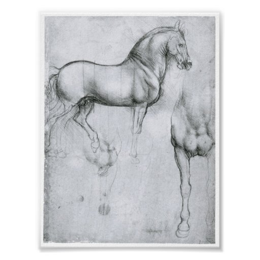 Estudio de los caballos, Leonardo da Vinci Poster