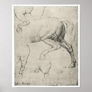 Estudio de los cuartos traseros de un caballo, da  póster